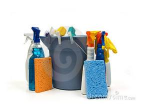 green homemade cleaning supplies