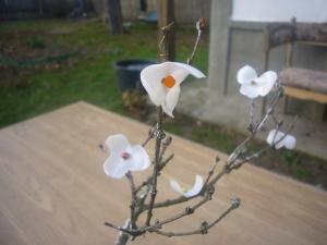 plastic bottle flowers for bonsai