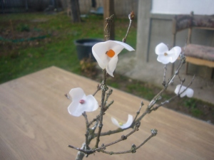 plastic bottle flowers for bonsai