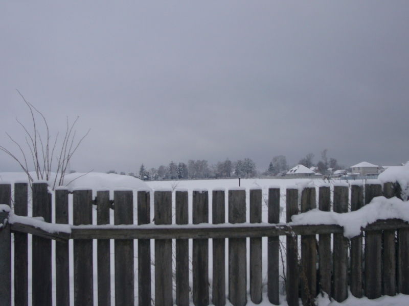 winter photoes